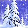 Image 2 : December