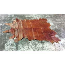 Full Brownish Red Hide Alligator Print