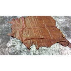 Full Brown Hide Alligator Print