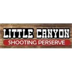 Pheasant Hunt at Little Canyon Shooting Preserve
