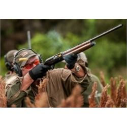 4 Day/4 Night Argentina Dove Hunt for 4 Hunters with Pointer Wingshooting