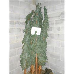 Indoor / Outdoor Decorative Pine Trees