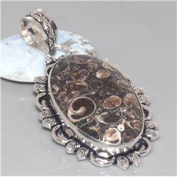 Turritella Fossil Agate Pendant