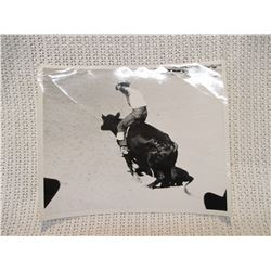 Vintage Rodeo Print Bull Riding