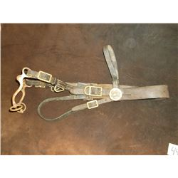 Old Headstall With Military Conchos- Cavalry S Shank Curb Bit