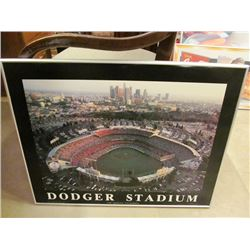 5 PIECES - FRAMED DODGER STADIUM, DIAMOND BACKS, DODGERS, TITANS, PACKERS