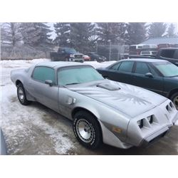 FRIDAY NIGHT! 1979 PONTIAC TRANS AM 36000 ORIGINAL MILES