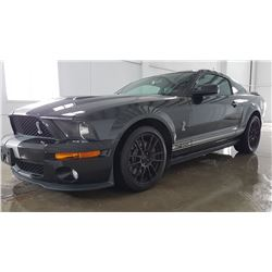 2005 SHELBY GT 500