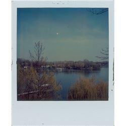 Prince Group of (3) Polaroids