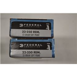 40 ROUNDS FEDERAL 22-250 REM 55 GRAIN SP