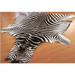 Hartmann's Mountain Zebra Rug
