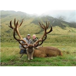 Five Day 1x1 Reg Stag Hunt in New Zealand