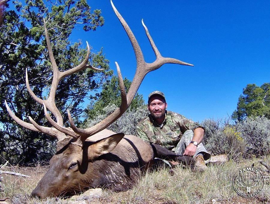 Discounted Guided Colorado Elk Hunt in the Elk Capitol of