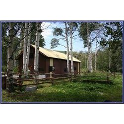 Discounted 2 Hunters Auction price each Colorado Guided elk huntw/M& L/1 hour horseback in AM & PM