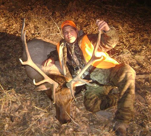 Discounted Colorado Elk Hunt Lodging with the option for