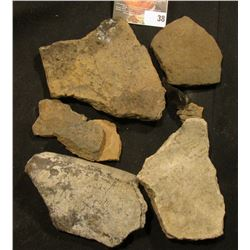 (8) Pre-Columbian Pottery Shards and a flaked piece of black Obsidian, various types and ages.