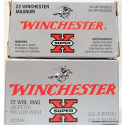 300 RNDS WINCHESTER 22 MAGNUM