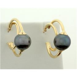 Black Pearl Hoop Earrings in 14k Gold