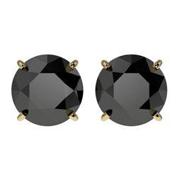 3 CTW Fancy Black VS Diamond Solitaire Stud Earrings 10K Yellow Gold - REF-64W3F - 33125