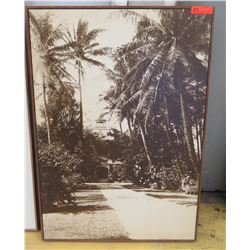 Framed Art: Vintage B&W Image Transfer on Wood, Block Frame, Coconut Trees, 29.5 X 42.5""