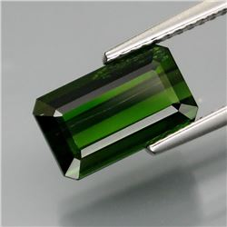 Natural Green Tourmaline 3.35 Carats