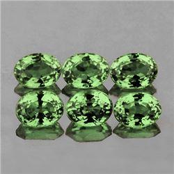 Natural Green Sapphire (6 Pcs) 5x4 MM - FL