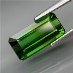 Natural Top Green Tourmaline 2.84 Cts
