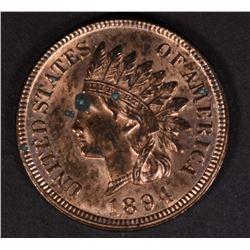 1894 INDIAN CENT BU, SPOT OBV.