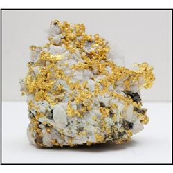 Natural gold-in-quartz specimen, 319 grams, from the Sixteen-to-One Mine in Sierra County, Californi