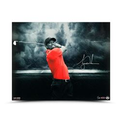 "Tiger Woods Signed ""Quiet Storm 16x20 Photo (UDA COA)"