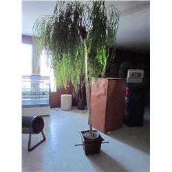 XL faux treee plant