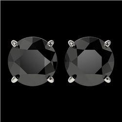 2.60 CTW Fancy Black VS Diamond Solitaire Stud Earrings 10K White Gold - REF-52X8T - 36683