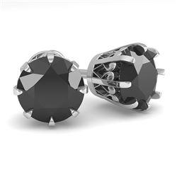 3.0 CTW Black Diamond Stud Solitaire Earrings 18K White Gold - REF-105T5M - 35703