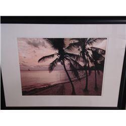 PALM BEACH PRINT