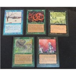 Lot Of 5 MTG German Cards From 1995
