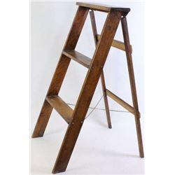 Globe Werneke 2 rung step ladder