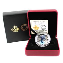 RCM Issue: 2017 Canada $20 Three-Dimensional Breaching Whale Fine Silver Coin (TAX Exempt)