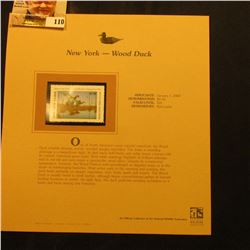 2000 Millenium New York $5.50 State Migratory Waterfowl Stamp, mounted in a plastic page with litera