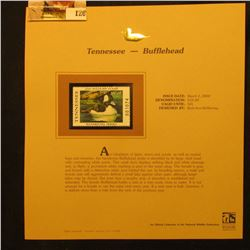 2000 Millenium Tennessee $10.00 State Migratory Waterfowl Stamp, mounted in a plastic page with lite