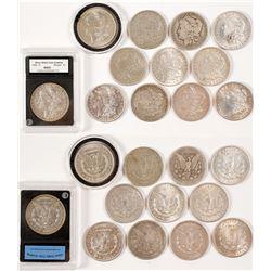Dozen Morgan Dollars