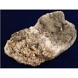 McLaughin Gold Mine