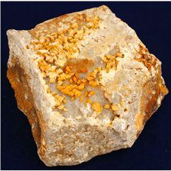 Tambo Gold Mine