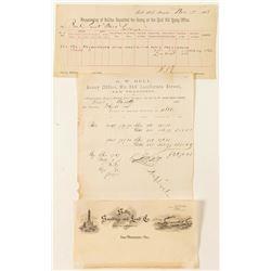 Comstock Assay Documents (3)