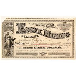 Essex Mining Company Stock Certificate, Pioneer District, AZ, 1879