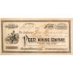 Extra Rare Peer Mining Company Stock Certificate