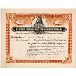 Tecopa Consolidated Mining Co. Stock Certificate, Tecopa, CA 1910