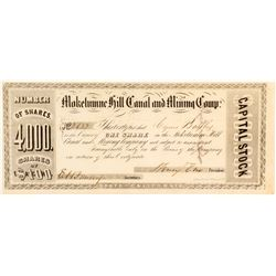 Mokelumne Hill Canal & Mining Company Stock Certificate, c.1850s