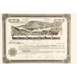 North America Consolidated Gold Mining Co. Stock Certificate, 1904, Hydraulic Mining Vignette