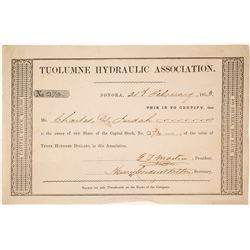Tuolumne Hydraulic Association Stock Certificate, 1853, California Gold Rush