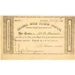 Columbia Gulch Fluming Co. Stock Certificate, 1856, California Gold Rush